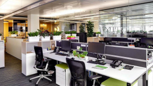 forex birouri cum să faci bani de la zero și fără